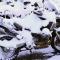 Где и как хранить свой скутер зимой